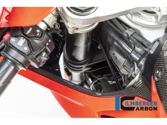 AIR TUBE COVER LEFT GLOSS CARBON ILMBERGER DUCATI PANIGALE V4 2018-2019