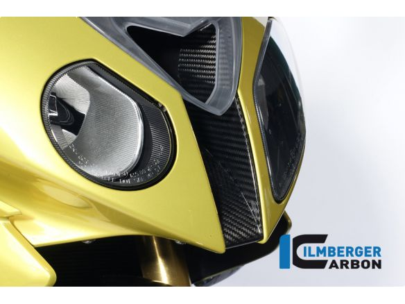 AIR INTAKE FRONT FAIRING CENTRE PIECE CARBON ILMBERGER BMW S 1000 RR 2012-2014 STRADA