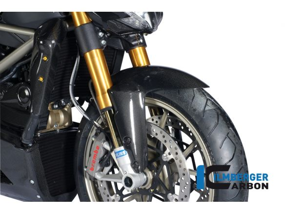 FRONT MUDGUARD CARBON ILMBERGER DUCATI STREETFIGHTER 848
