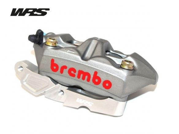 COPPIA FLANGE WRS ATTACCO RADIALE 100MM ARGENTO BMW R 1200 GS / ADV 2004-12