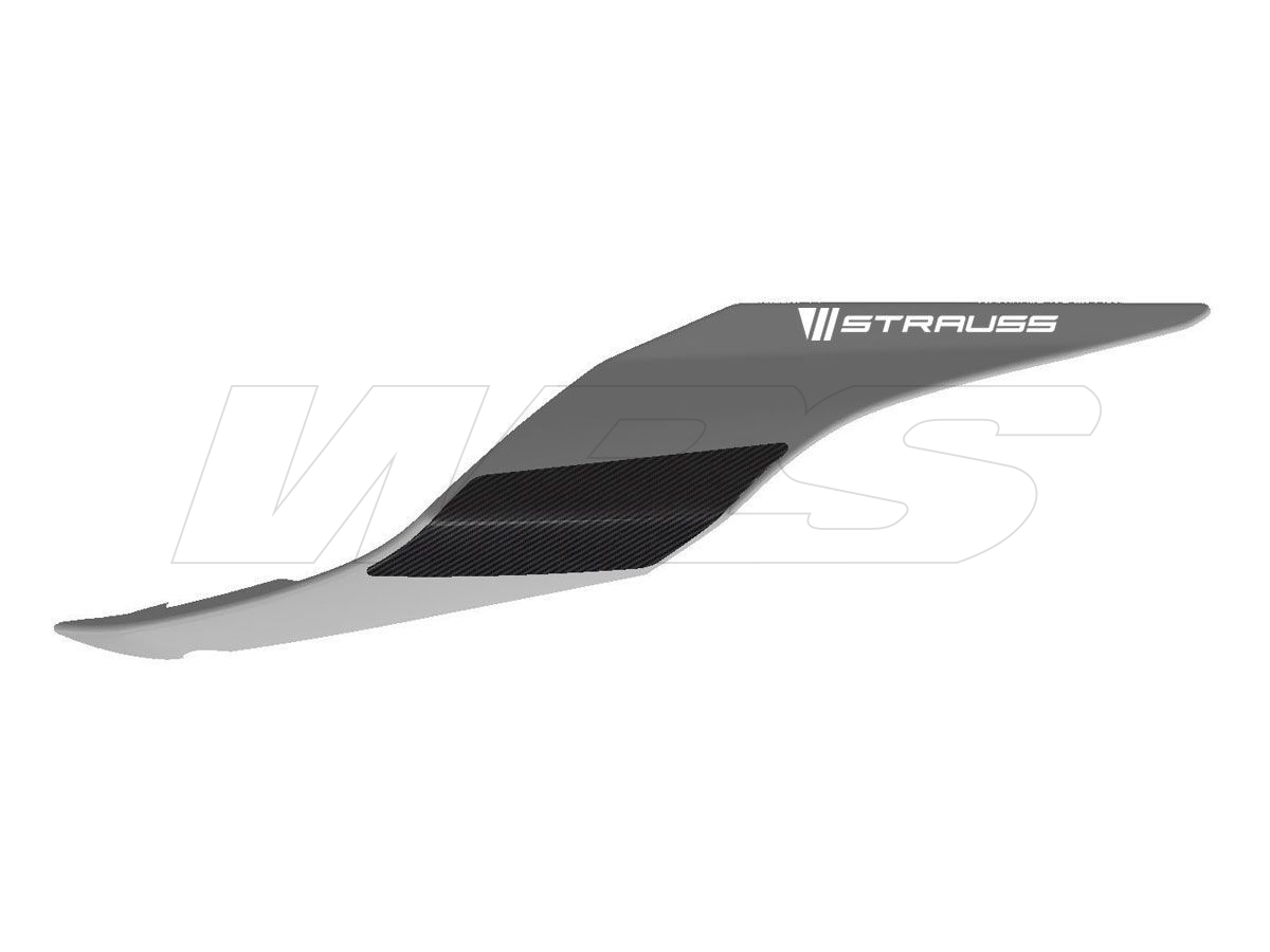 STRAUSS PAIR TAIL CARBON PROTECTIONS YAMAHA YZF-R6 2017-2019